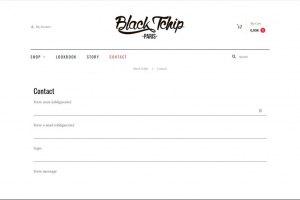 blacktchip_webdesign_Youldesign_05