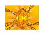 bitcoin_cardgame
